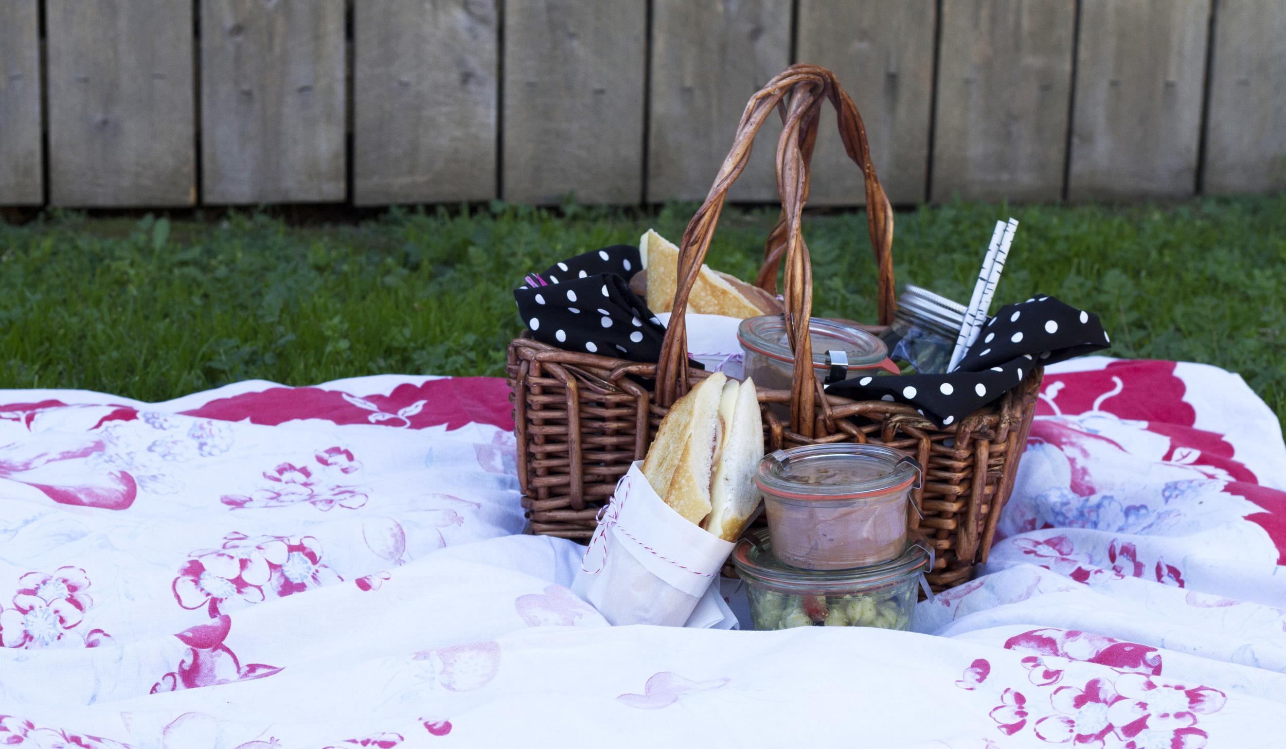 picnic on grass long.jpg