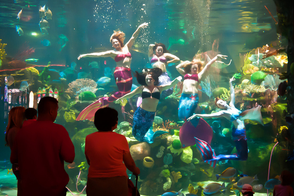 The Mermaids Of Silverton Hotel & Casino Las Vegas