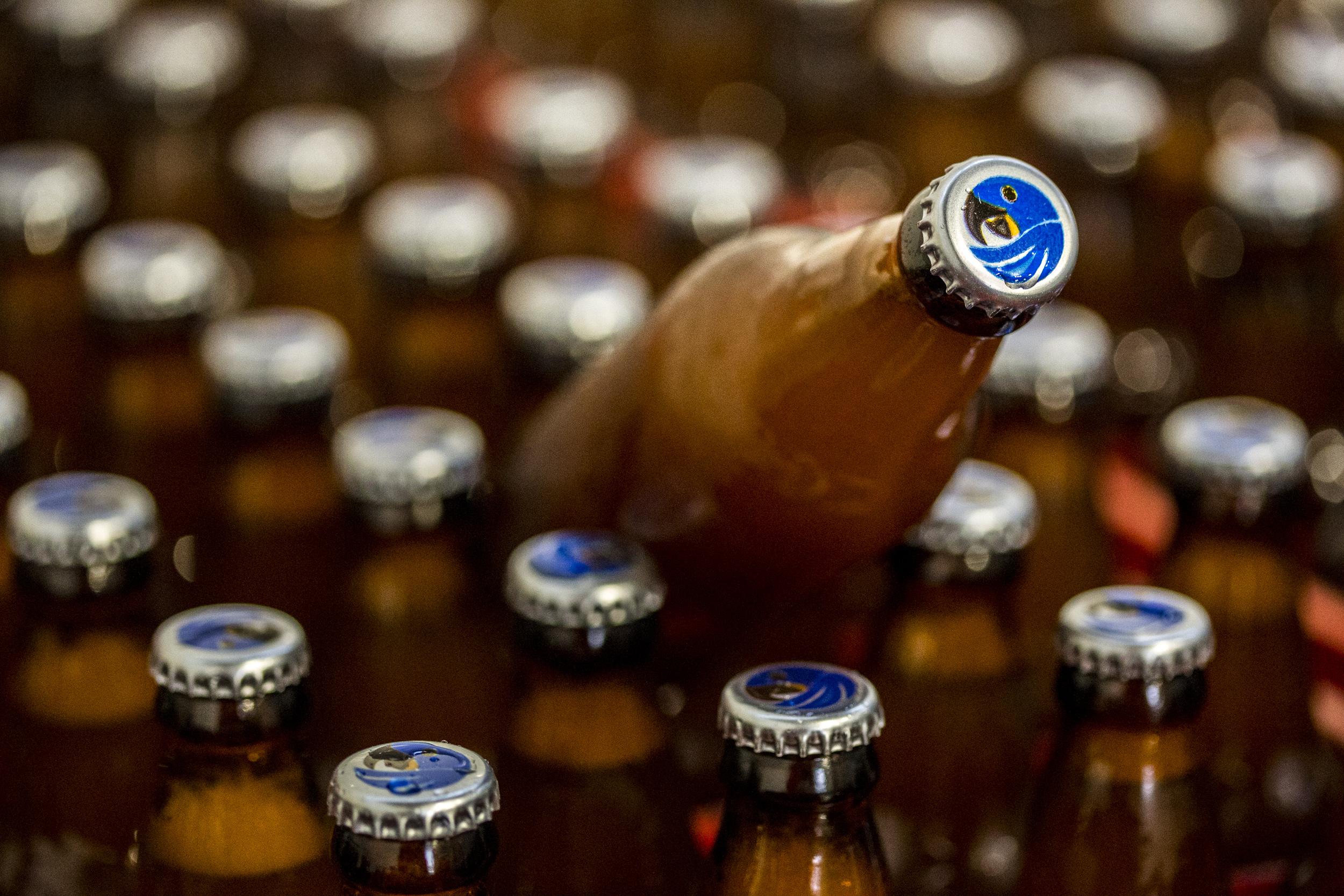 Cervejaria que tem como símbolo a arara foi a sensação da South Beer Cup 2014 (Foto: Ricardo Jaeger/Beer Art)