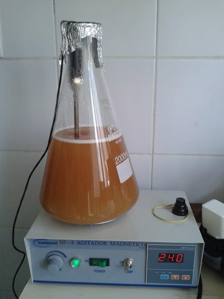 Na foto, uma das etapas da preparação da levedura (Foto: Divulgação)