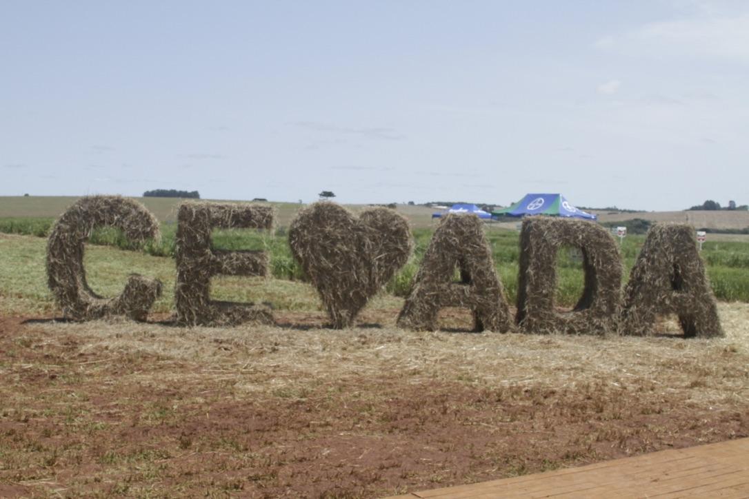 Atividade incluiu minitour por um campo de cevada, com cinco estações para tratar dos temas que envolvem a produção do cereal (Foto: Altair Nobre/Beer Art)