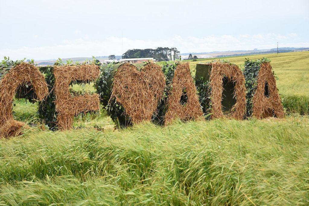 Dia de Campo ocorreu em 18 de outubro (Foto: Divulgação)