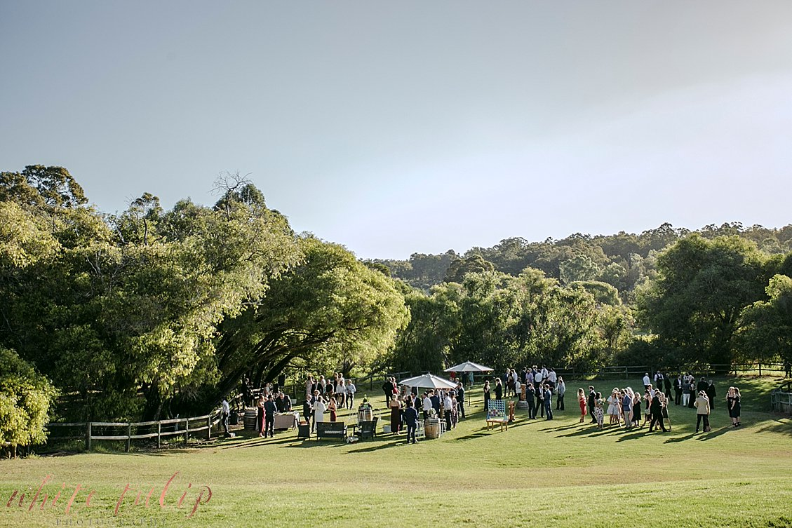 ferguson-valley-wedding-st-aidans-wines_0039.jpg