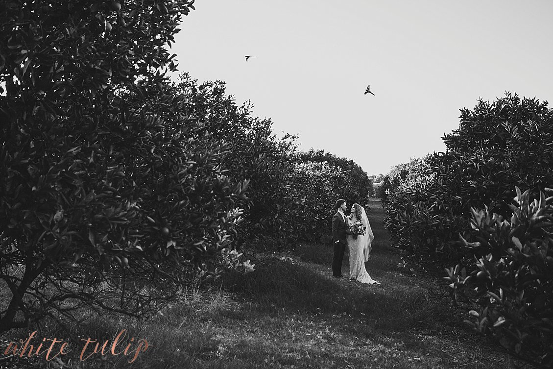 ferguson-valley-wedding-st-aidans-wines_0049.jpg