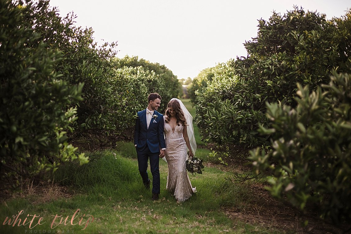 ferguson-valley-wedding-st-aidans-wines_0050.jpg