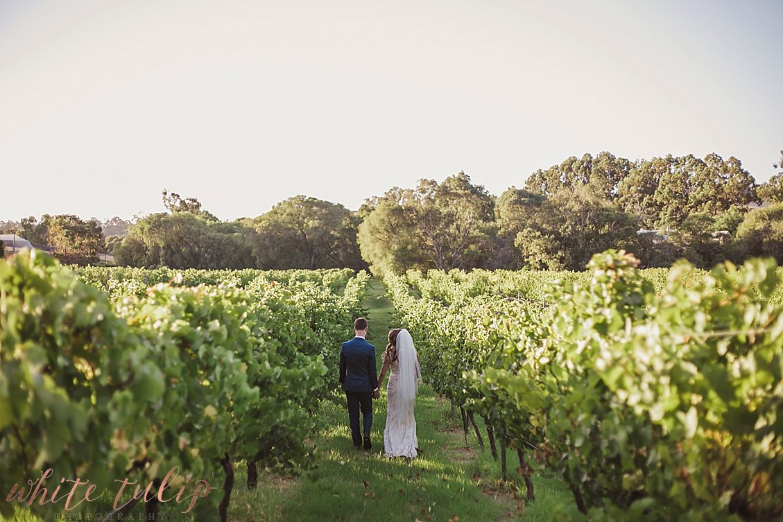 ferguson-valley-wedding-st-aidans-wines_0056.jpg