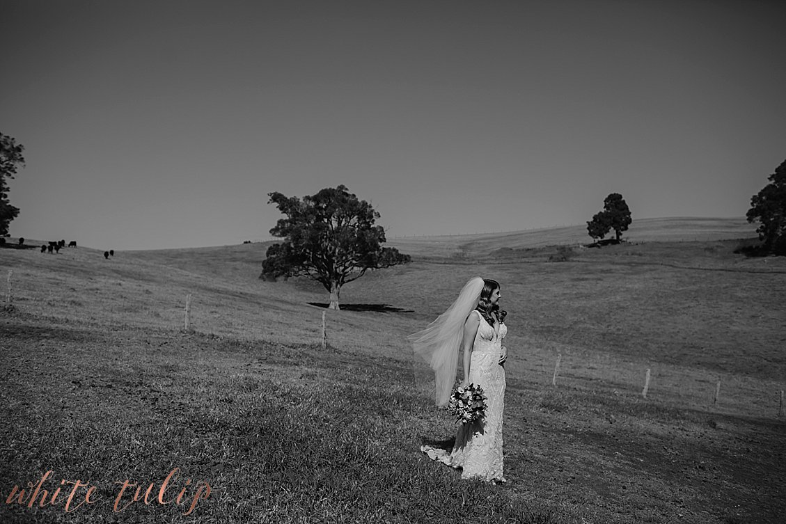 ferguson-valley-wedding-st-aidans-wines_0009.jpg