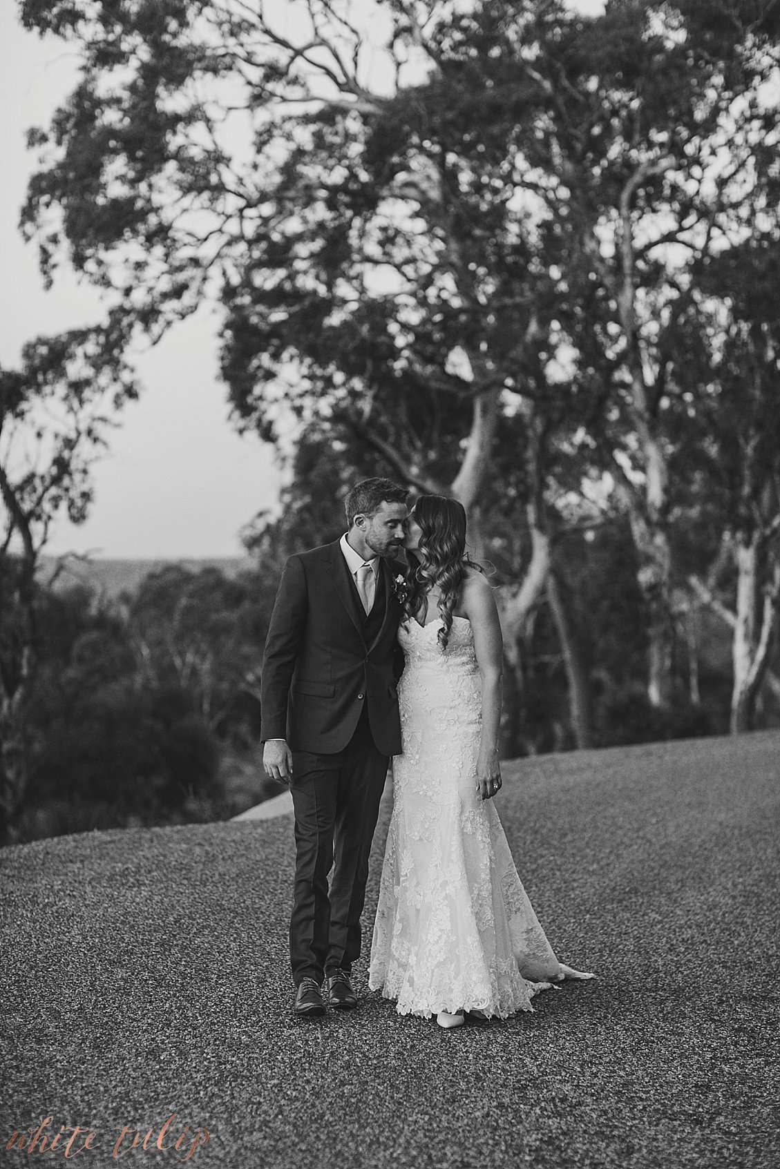 darlington-estate-adventure-wedding-photographer-perth_0091.jpg