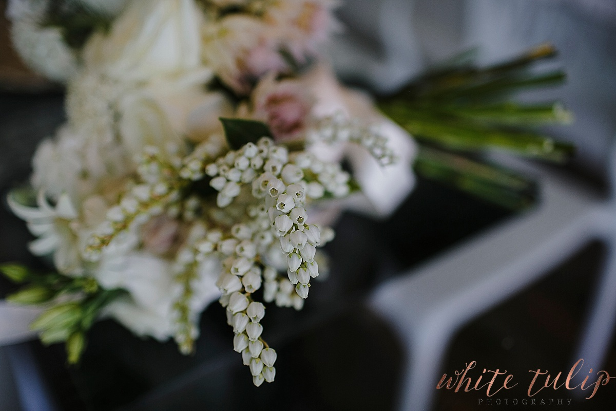 frasers-wedding-photographer-kings-park_0002.jpg