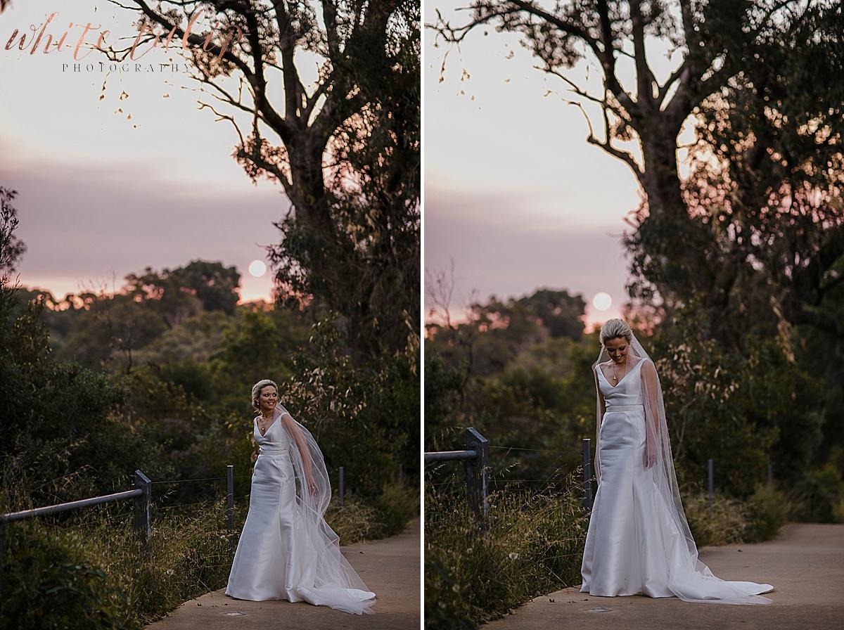 frasers-wedding-photographer-kings-park_0068.jpg
