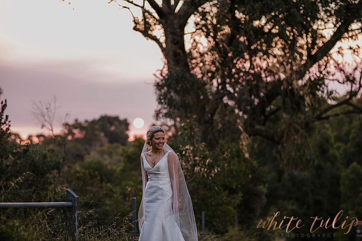 frasers-wedding-photographer-kings-park_0069.jpg