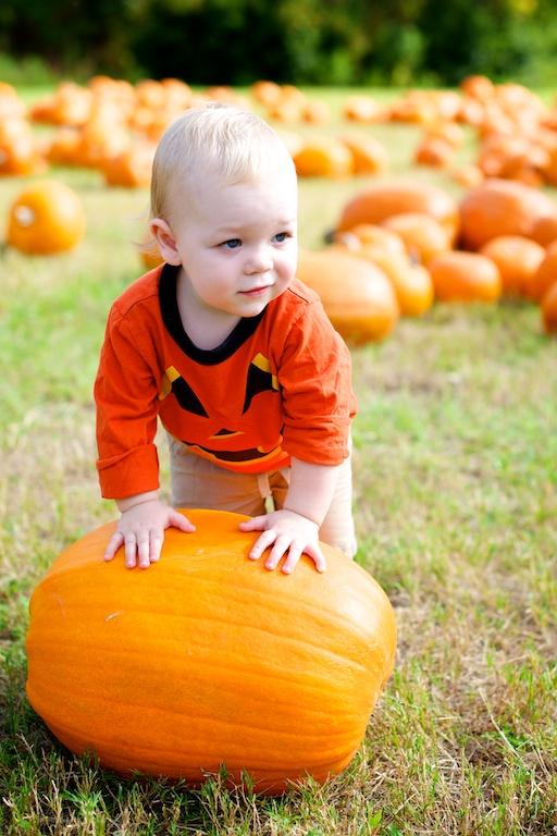 Jacksonville Beach Family Photographer – Pumpkins.jpg