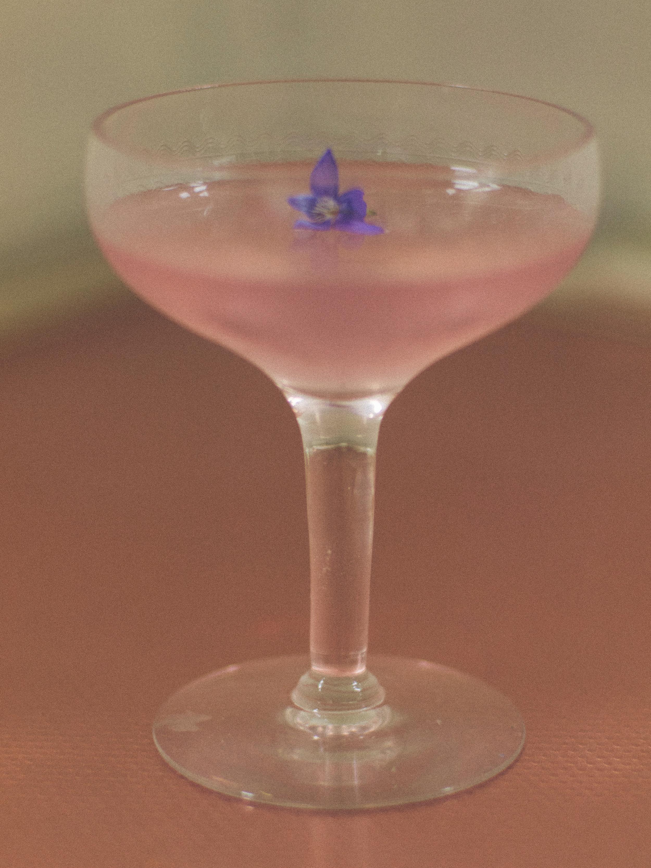 America Village - The Wild Violet Cocktail