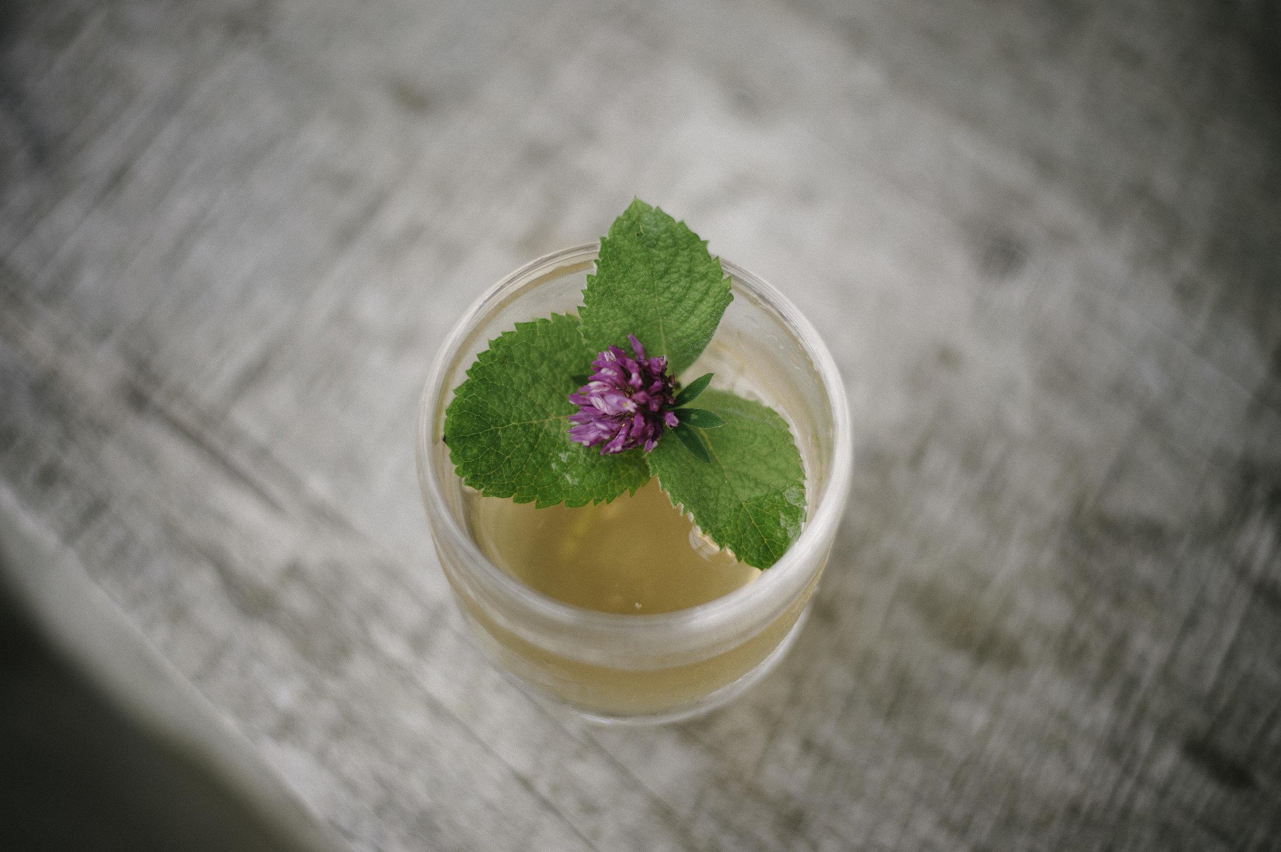 America Village Druid Cocktail
