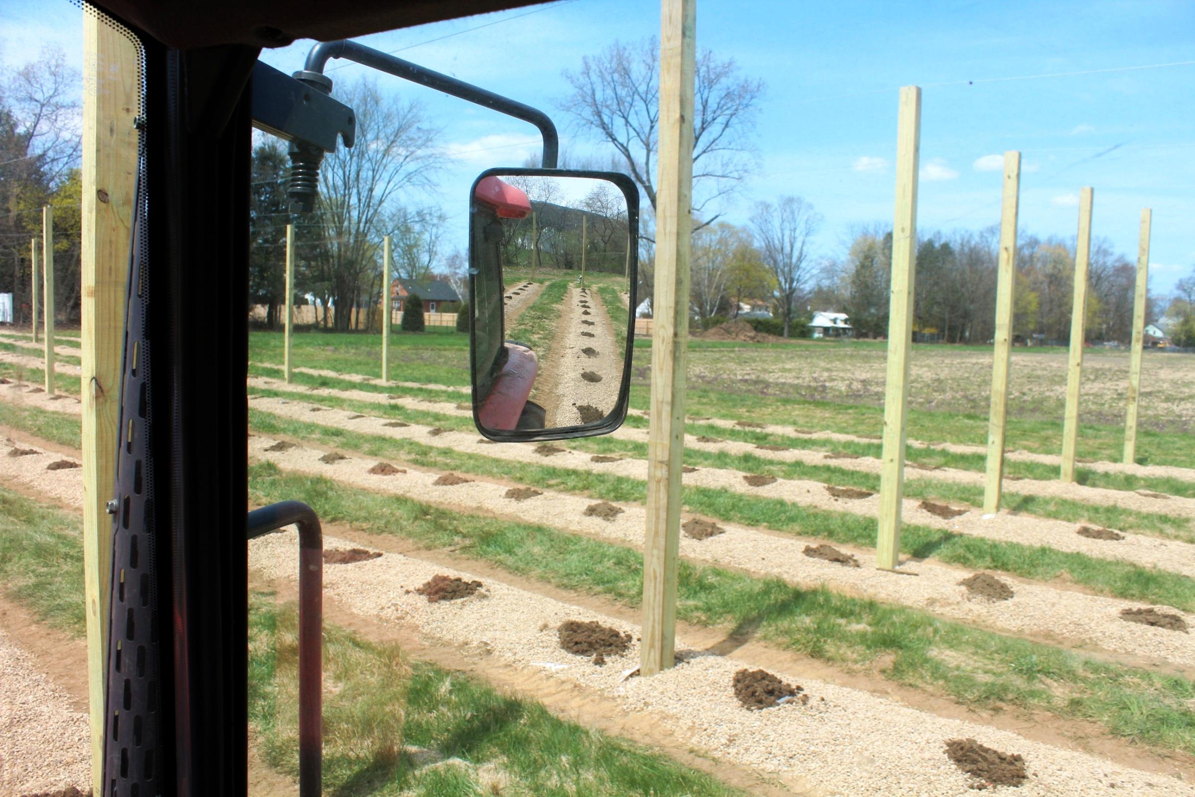 09-Fav Planting Pic.jpg