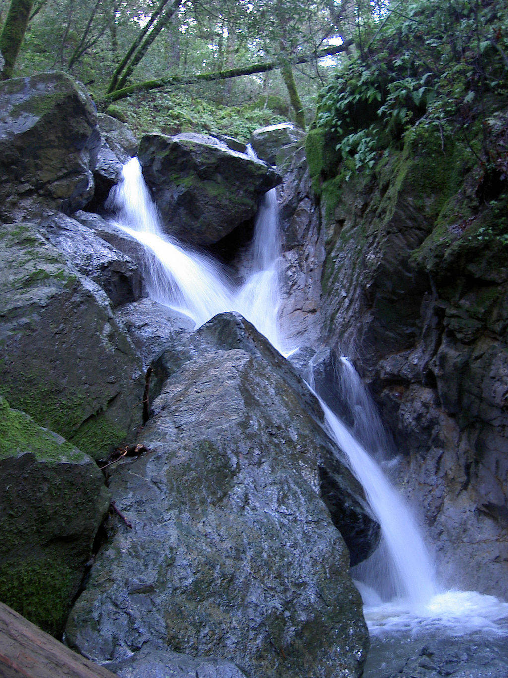 sugarloaf waterfall eco.jpg