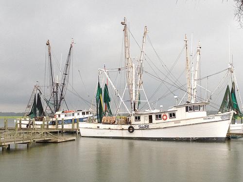 photo 6 - Port Royal Shrimp Boats.jpg