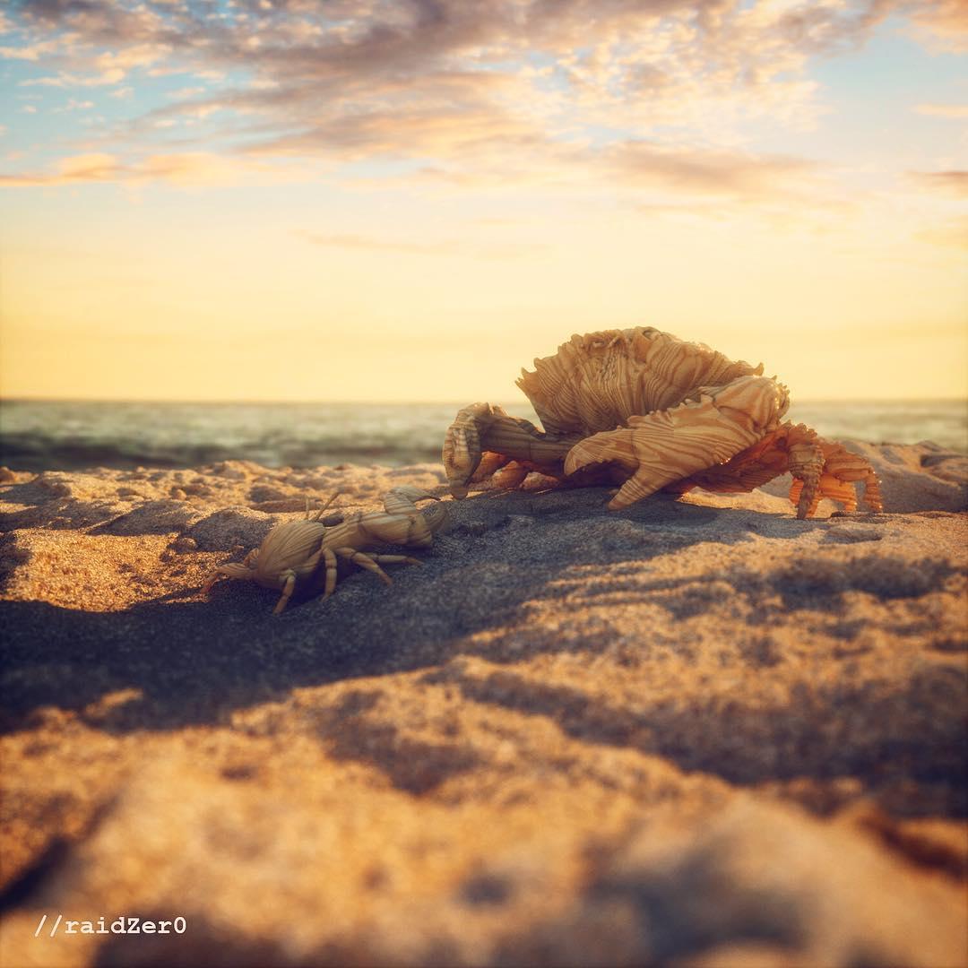 Wood Crab