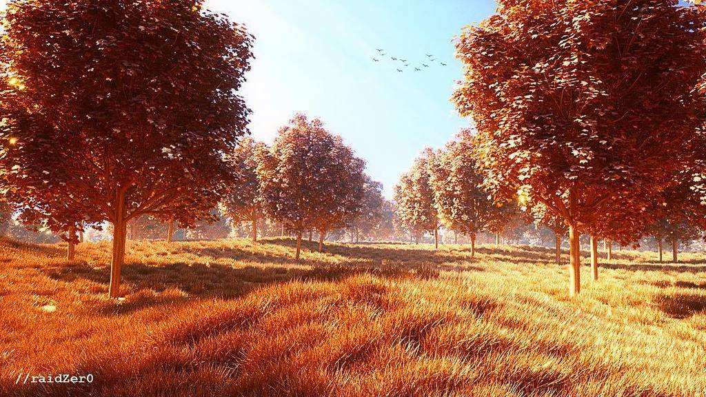 Copper Forest
