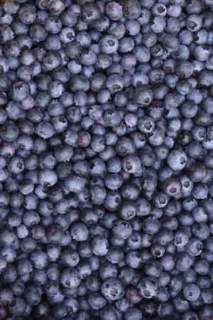Blueberries-.jpg