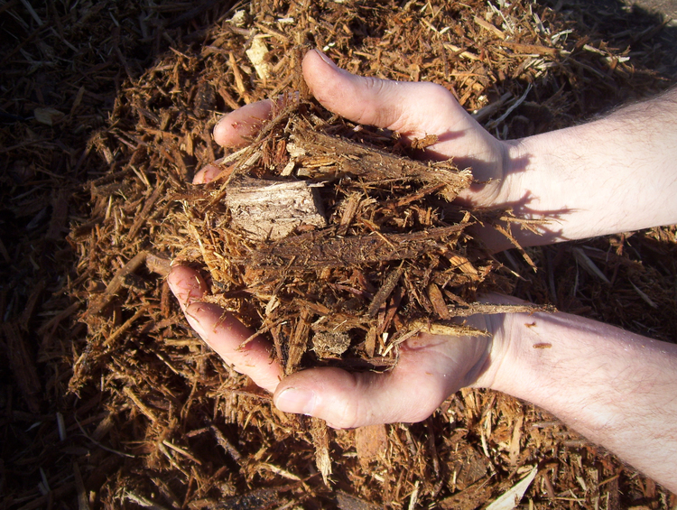coarse light light brown mulch in orrville Ohio