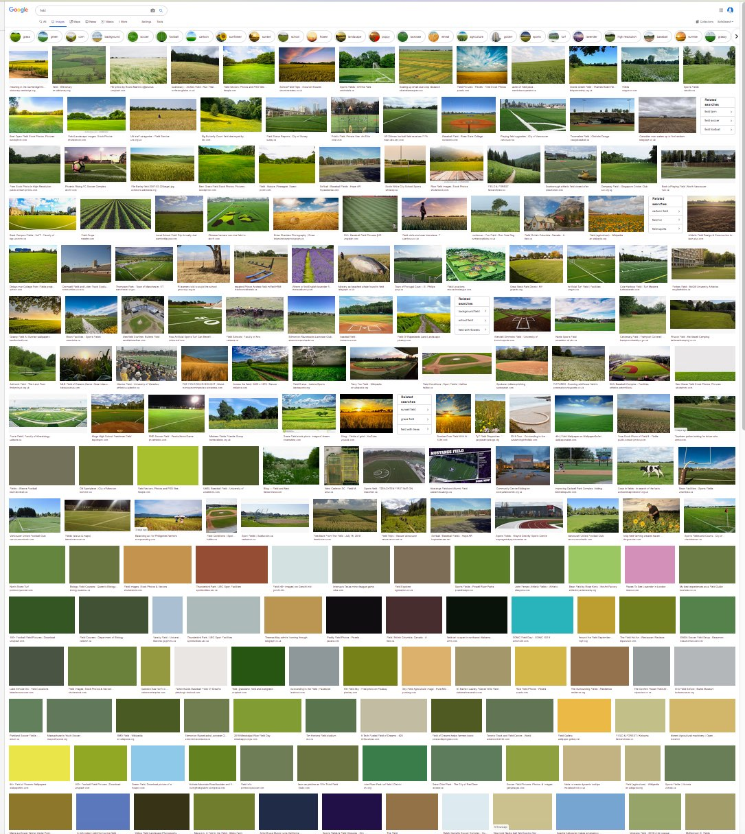 field - Google Search.jpg