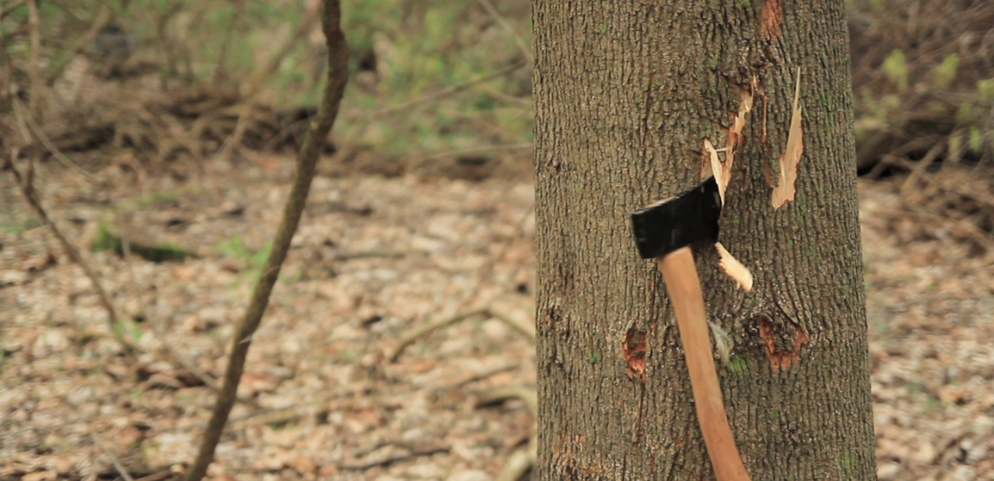 """06  A cut shot shows the hatchet striking a tree in the forest. The advertisement ends with a shot of an R&R bottle sitting on a tree stump as David's voice says """"R&R. Real whiskey. Real Cheap."""""""