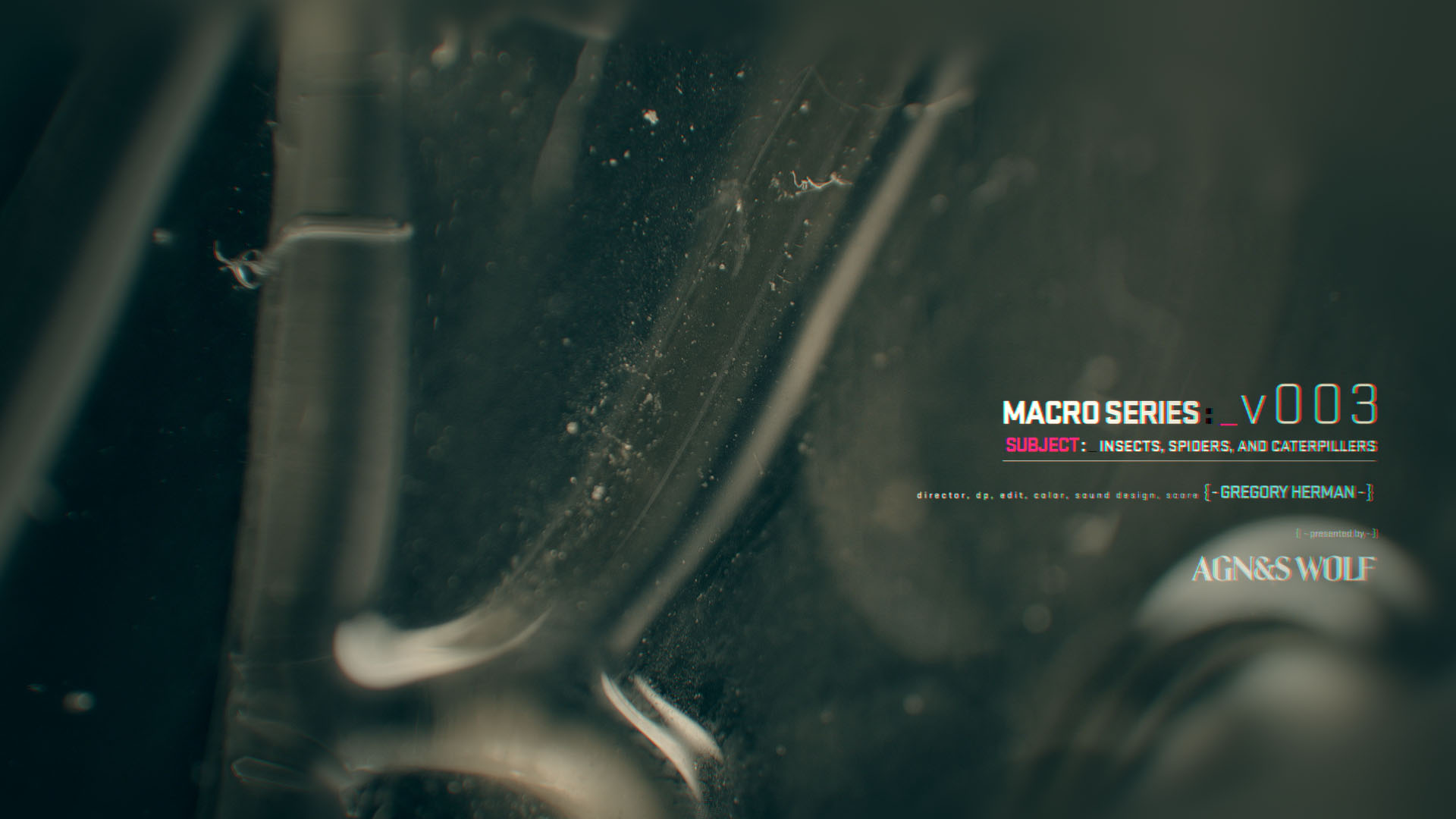 01_macro_series_v3_4.jpg