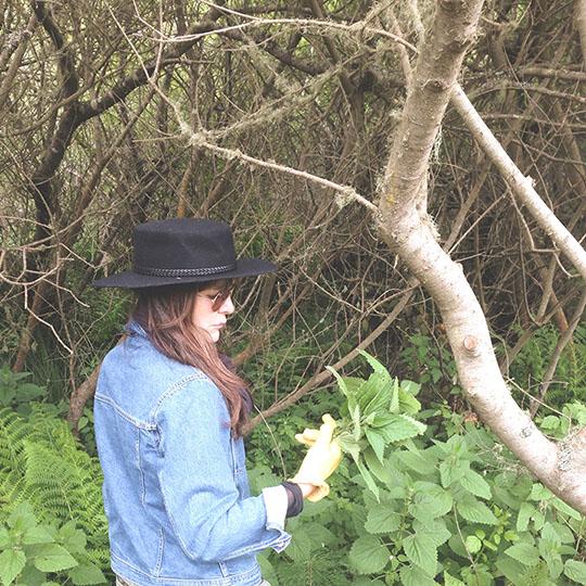 Kelsey Barrett collecting nettles