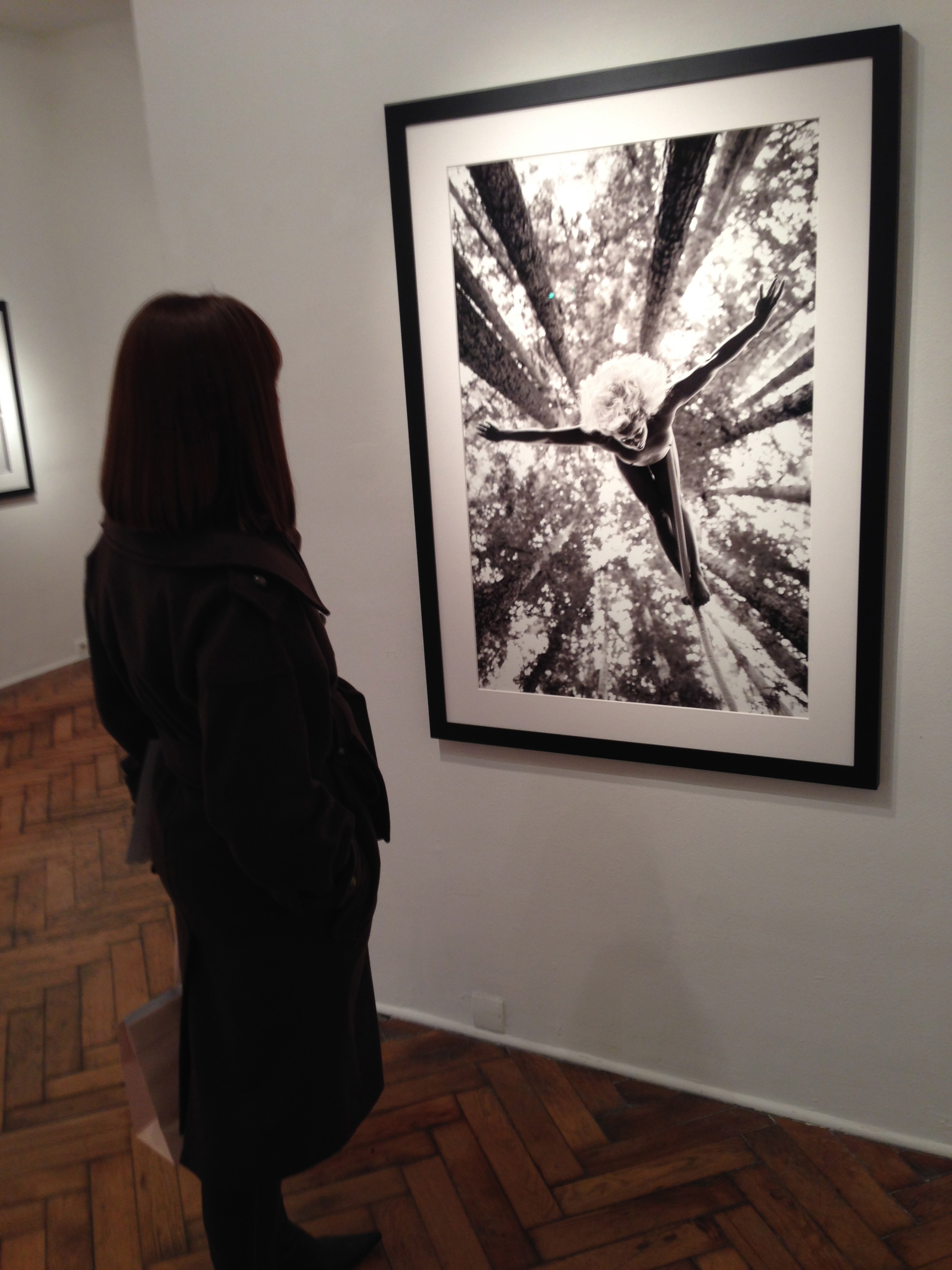 Acey Harper, 'No Limits 2' @ Galerie Hug, Paris 4.12.13