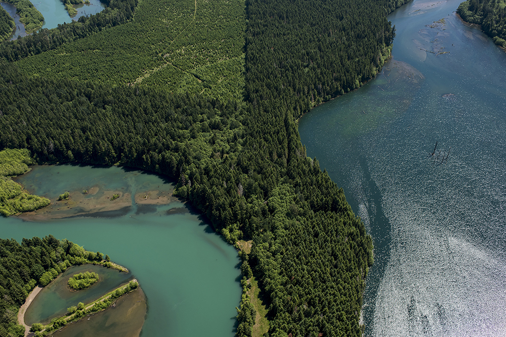 East of the confluence of the Cispus River, bottom right, and the Cowlitz River near Glenoma, Wash.