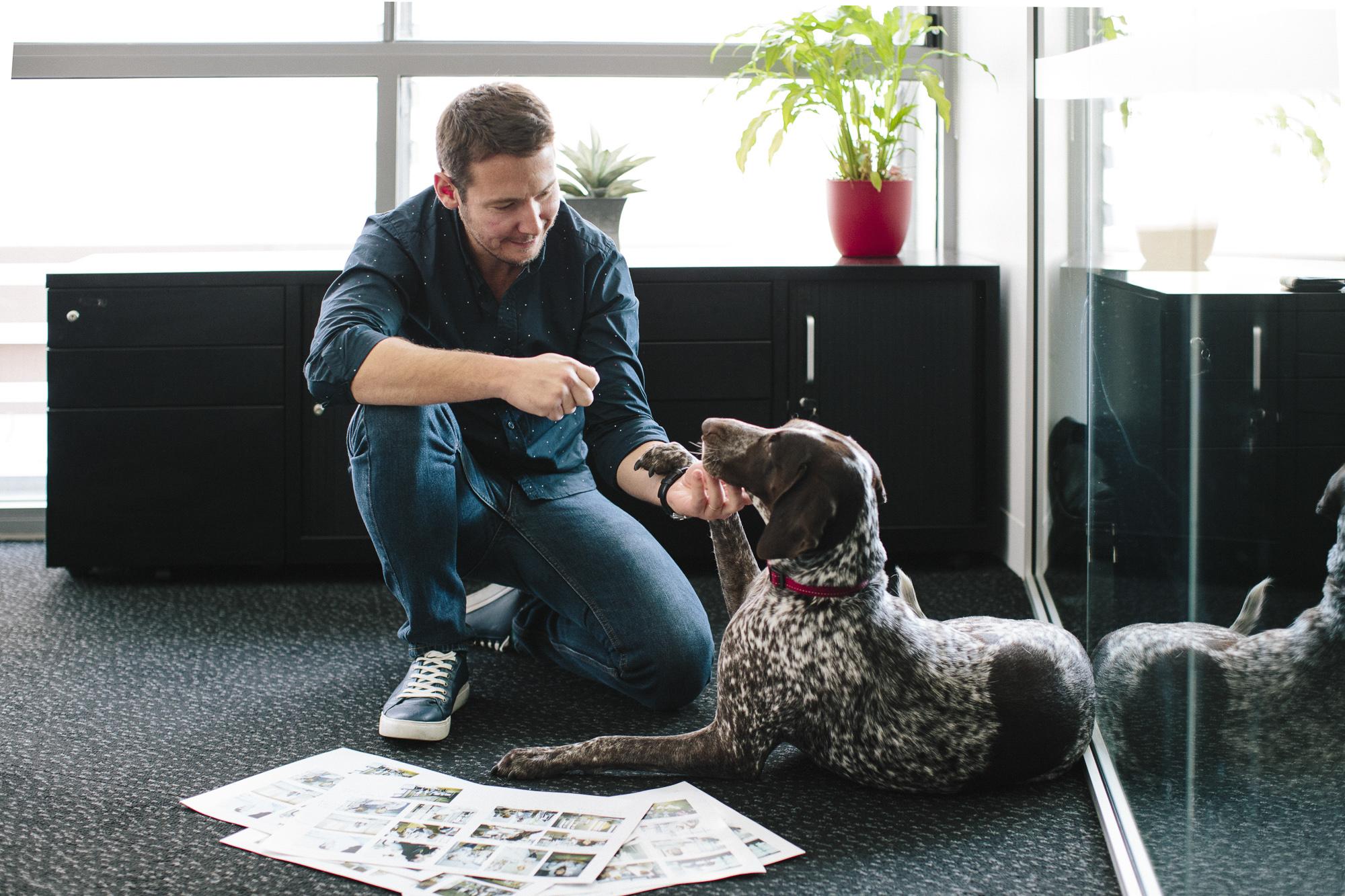 Corporate Dog Portraits
