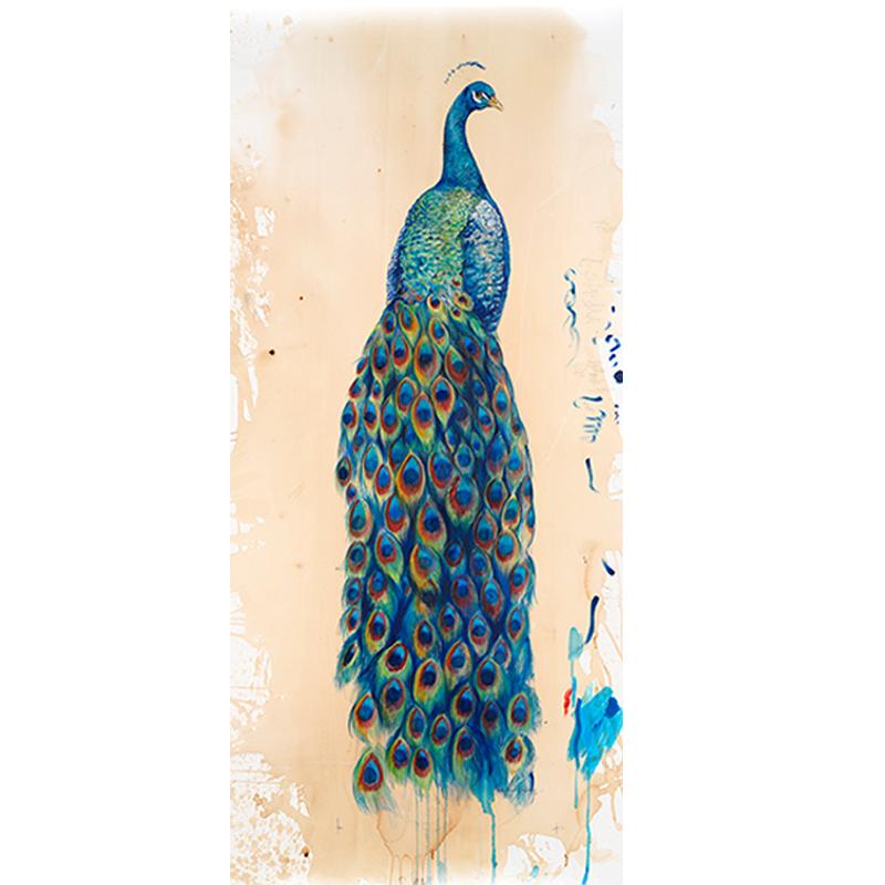 """""""Peacock II"""""""