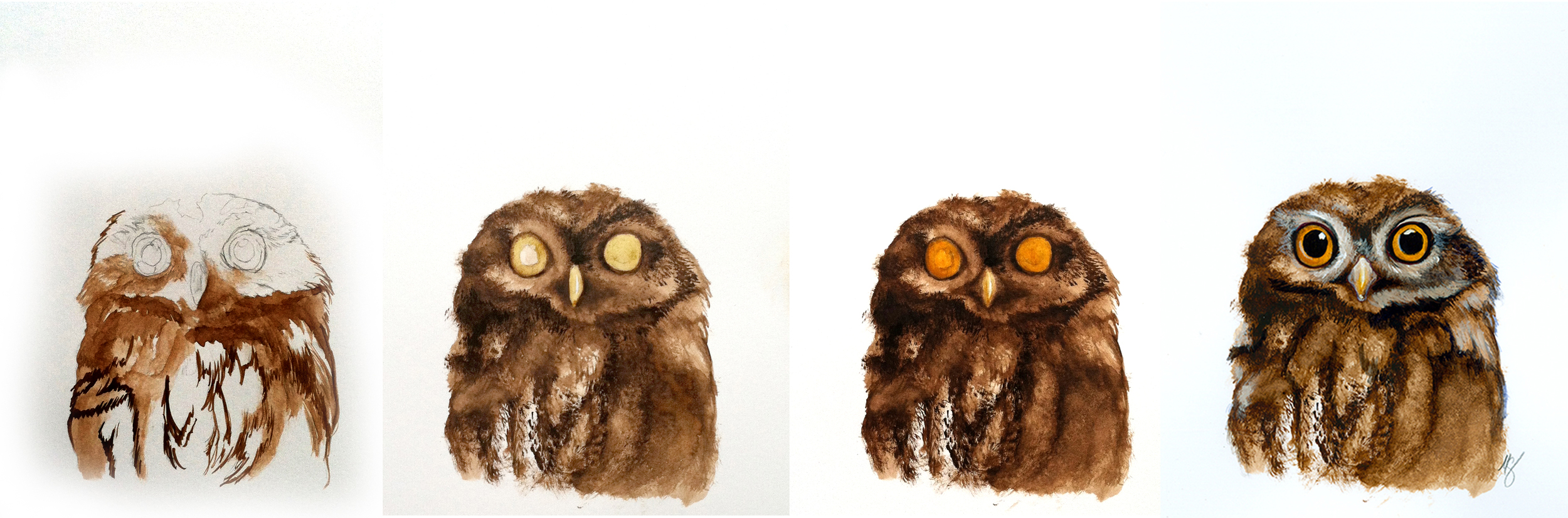 Here is a progression of the little Owl .. I started with a pencil sketch from a picture of a baby owl and then built up his ruffled feathers in watercolor…Those yellow eyes really pop due to the contrast!
