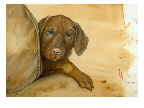 Murphy as a puppy. This is one of my favorite portraits!