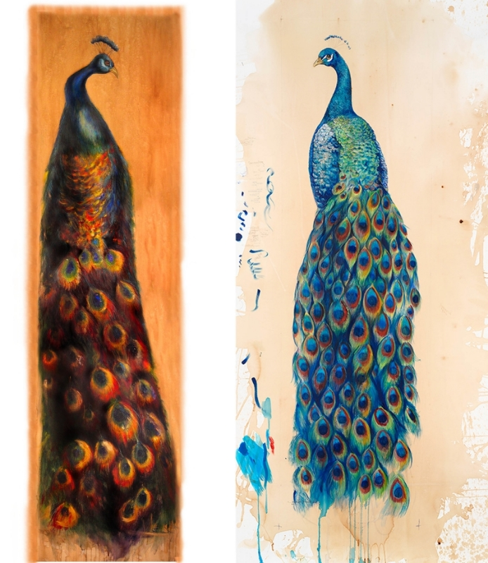 Peacock I - 2005 and Peacock II - 2009