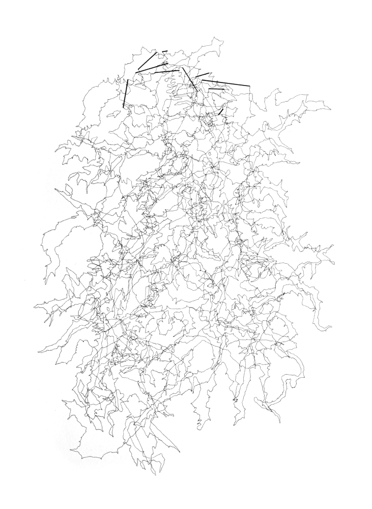 """Bethany Johnson  Stacked Lakes (Lakes with Dams), 2011 Ink on paper 12"""" x 9"""" Retail Value: $1,200 Opening Bid: $500"""