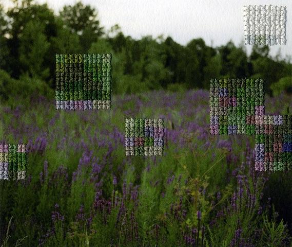 "Diane Meyer   New Jersey VIII  , 2011 Ed. 1 of 3 Hand sewn archival inkjet print 4.25"" x 6""   Retail Value: $1,600   Opening Bid: $800"