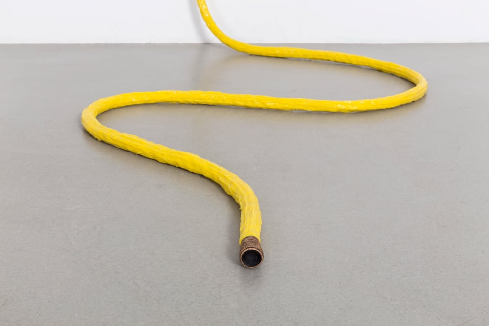 Water hose, Live Strong, 2015