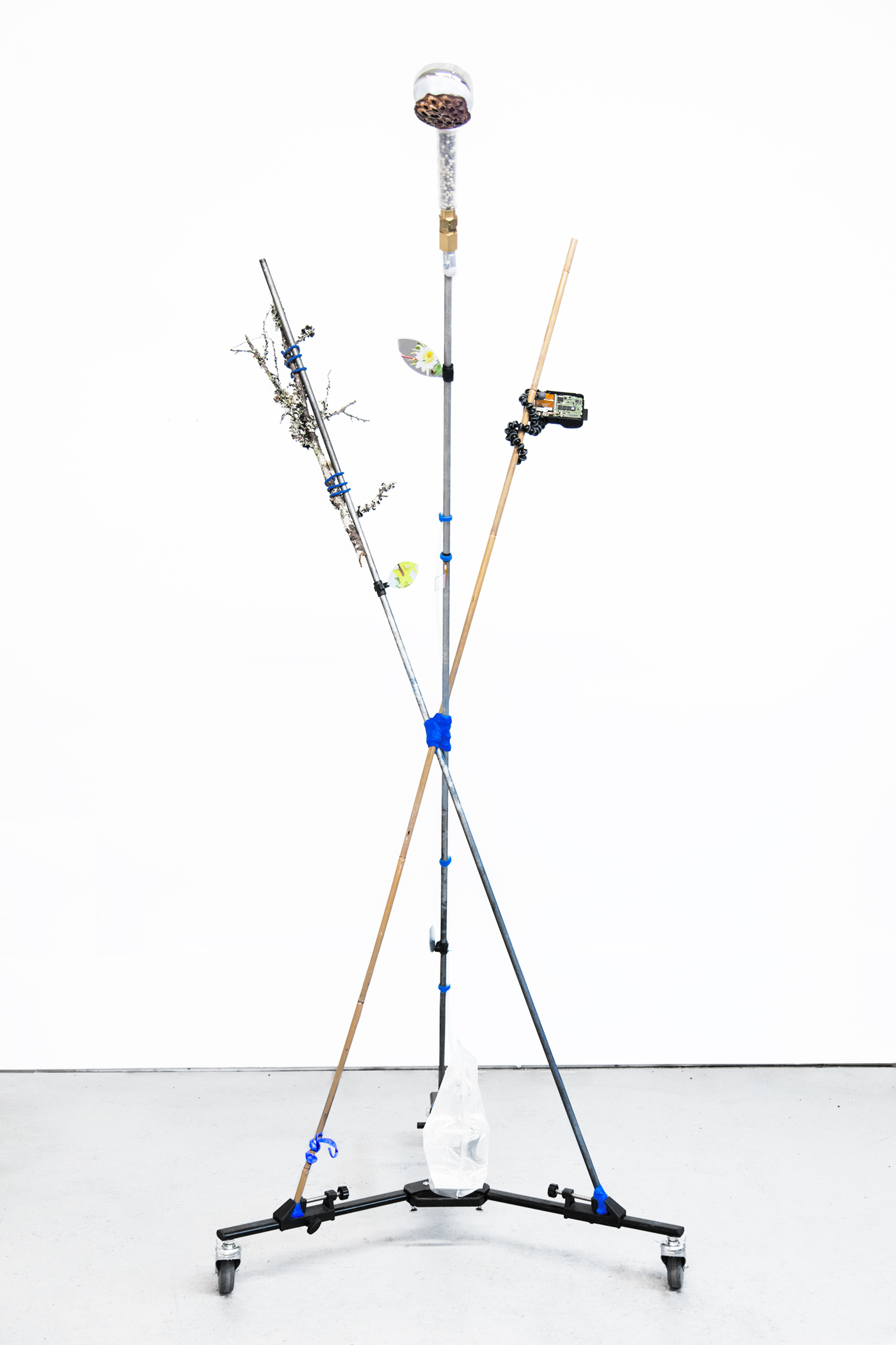 Carson Fisk-Vittori   Weather pollination techniques: out of human visible range , 2016  UV prints on aluminum, aluminum poles, bamboo, hand-formed plastic, lichen covered branch, lotus seed pod, digital camera, flexible tripod, negative ion showerhead, metal and plastic hardware and fixtures, velcro, water,78 x 36 x 36 inches