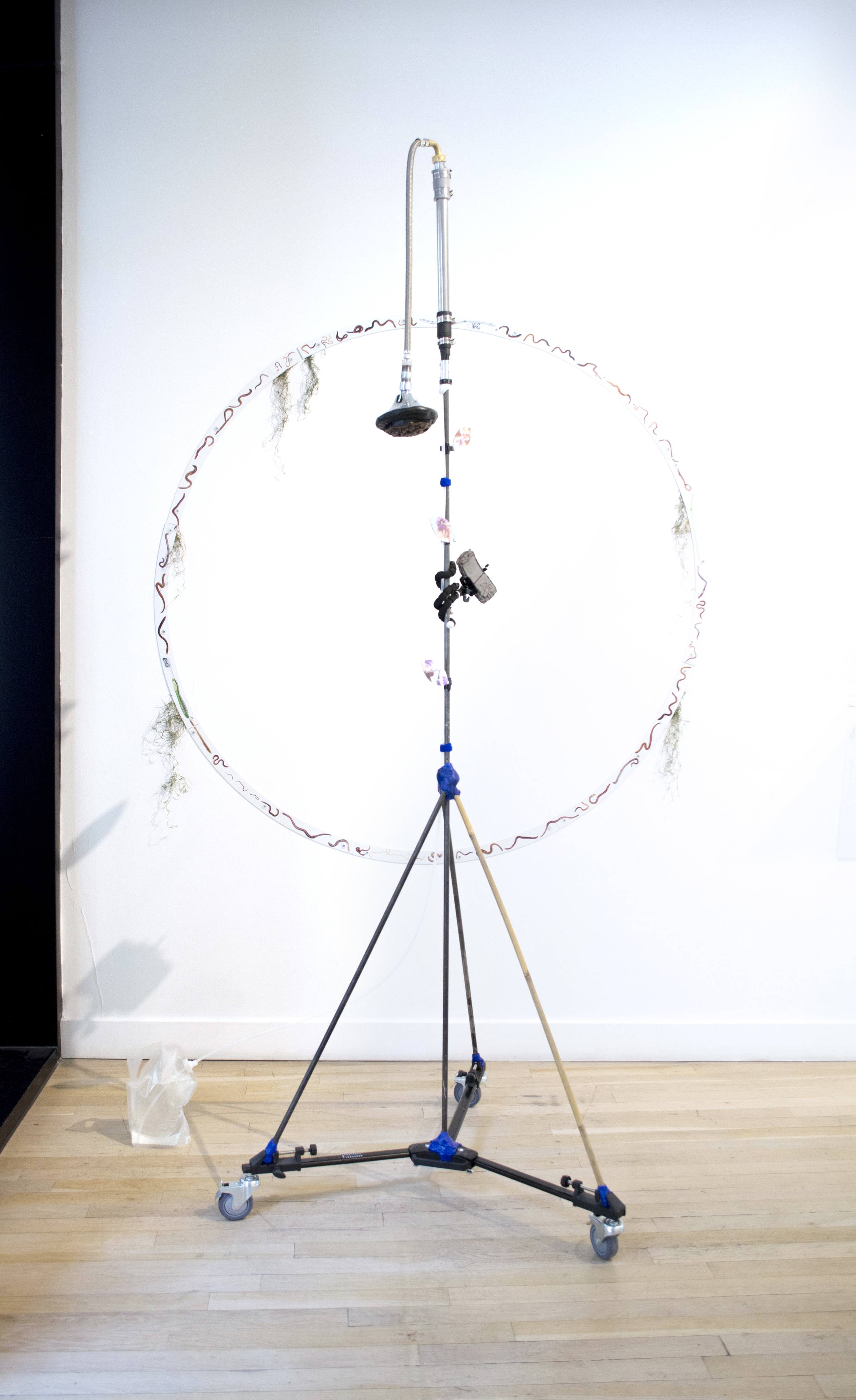 """Carson Fisk-Vittori  (FLOOR)  Weather pollination techniques: Someone's holding a small purple flower with dirt all over their hands , 2016  UV prints on aluminum, aluminum poles, bamboo, hand-formed plastic, lotus seed pod, clay, flexible tripod, showerhead, metal and plastic hardware and fixtures, velcro, water,84 x 36 x 36""""  (WALL)  Plan for a pond: the social earthworm , 2016  UV prints on aluminum, spanish moss,60 x 60"""""""