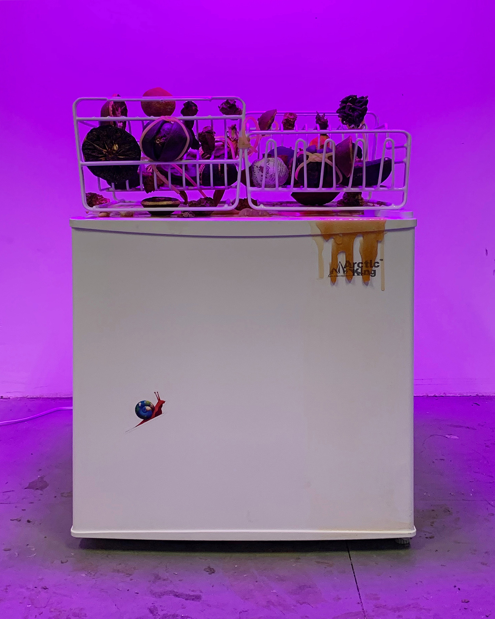 Seeking The Common Ground  2019 Mini freezer, handmade popsicles with newspaper confetti, dish racks, preserved tropical fruit, frozen cube fruit, plant lights  18 x 19 x 27 inches