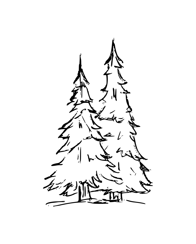 TreesDark-8x10.jpg