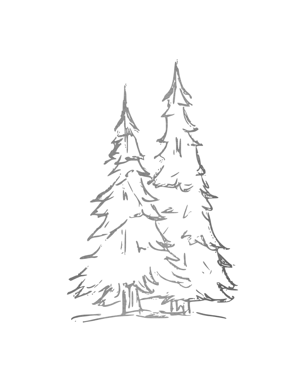 TreesLight-8x10.jpg