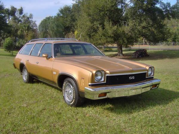 A 1973 Chevelle Malibu Station Wagon similar in appearance to the car given to Agnes Baron in the late 1970s/early 1980s. ( Wikipedia .)