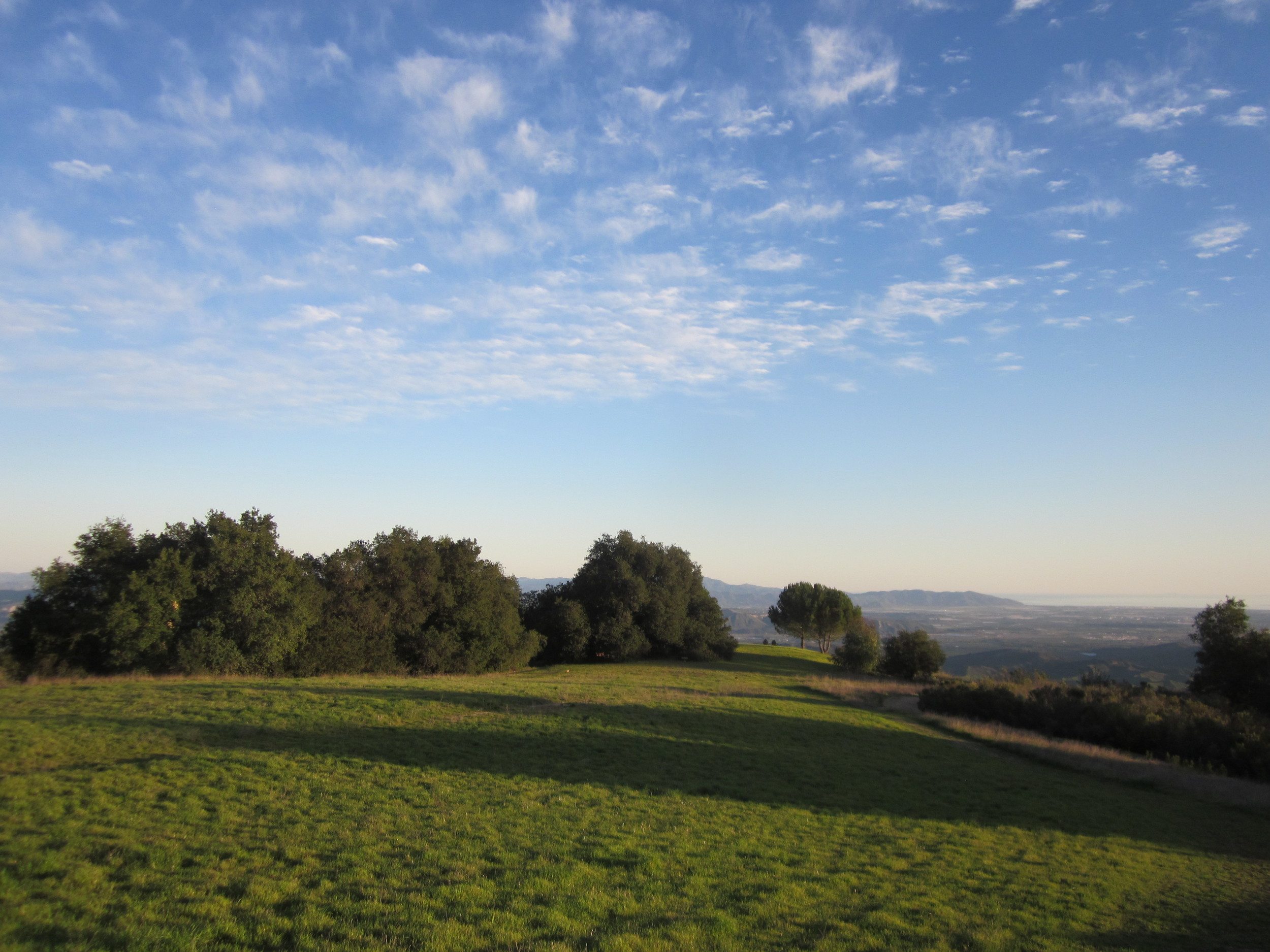BLUE SKIES and green meadows signal winter at Meher Mount. This view is looking toward Baba's Tree with the Pacific Ocean in the far background to the right. (Wayne Myers photo, 2013.)
