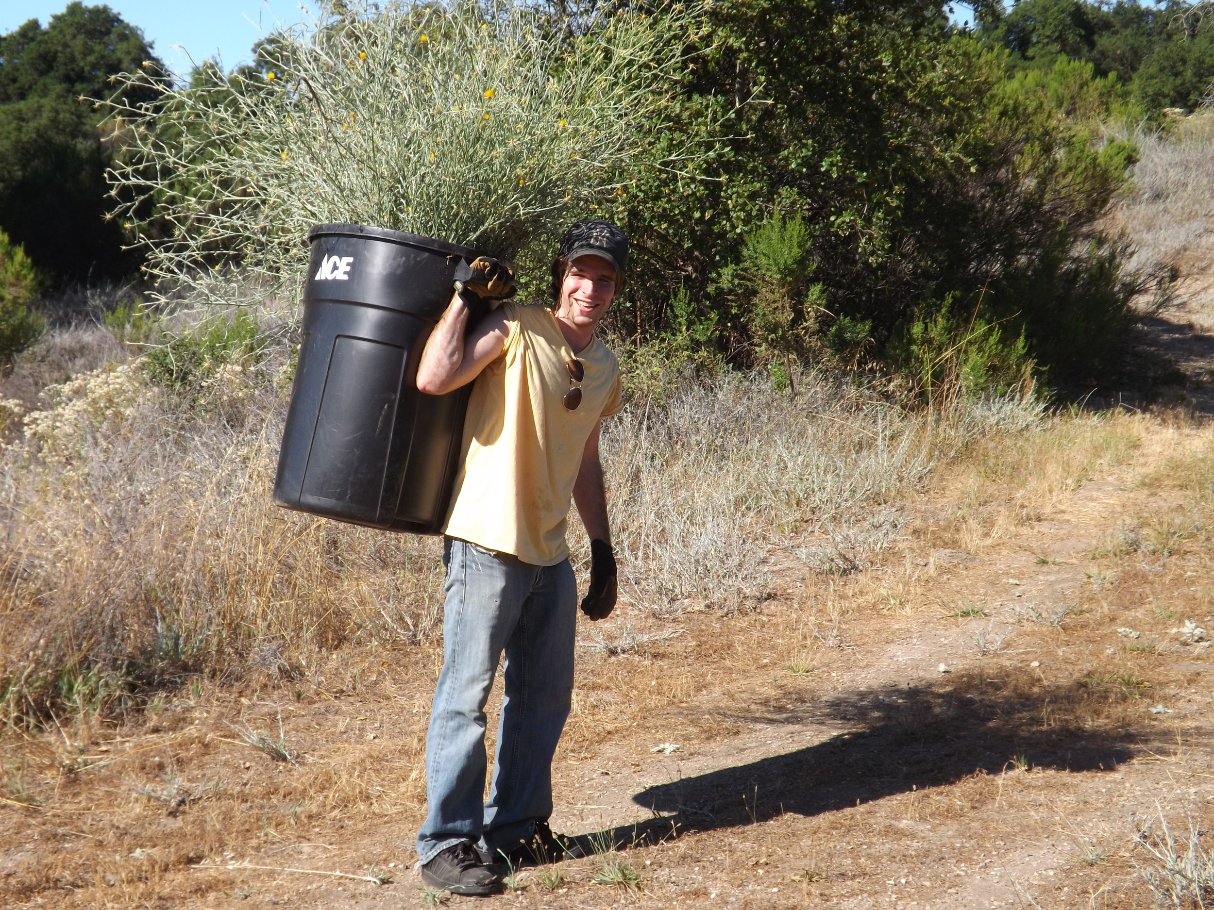 IAN DIBBLE taking a just-emptied trash can back down the hill for more weed pulling of the invasive Yellow Starthistle. (Photo: Leslie Bridger, 2012)