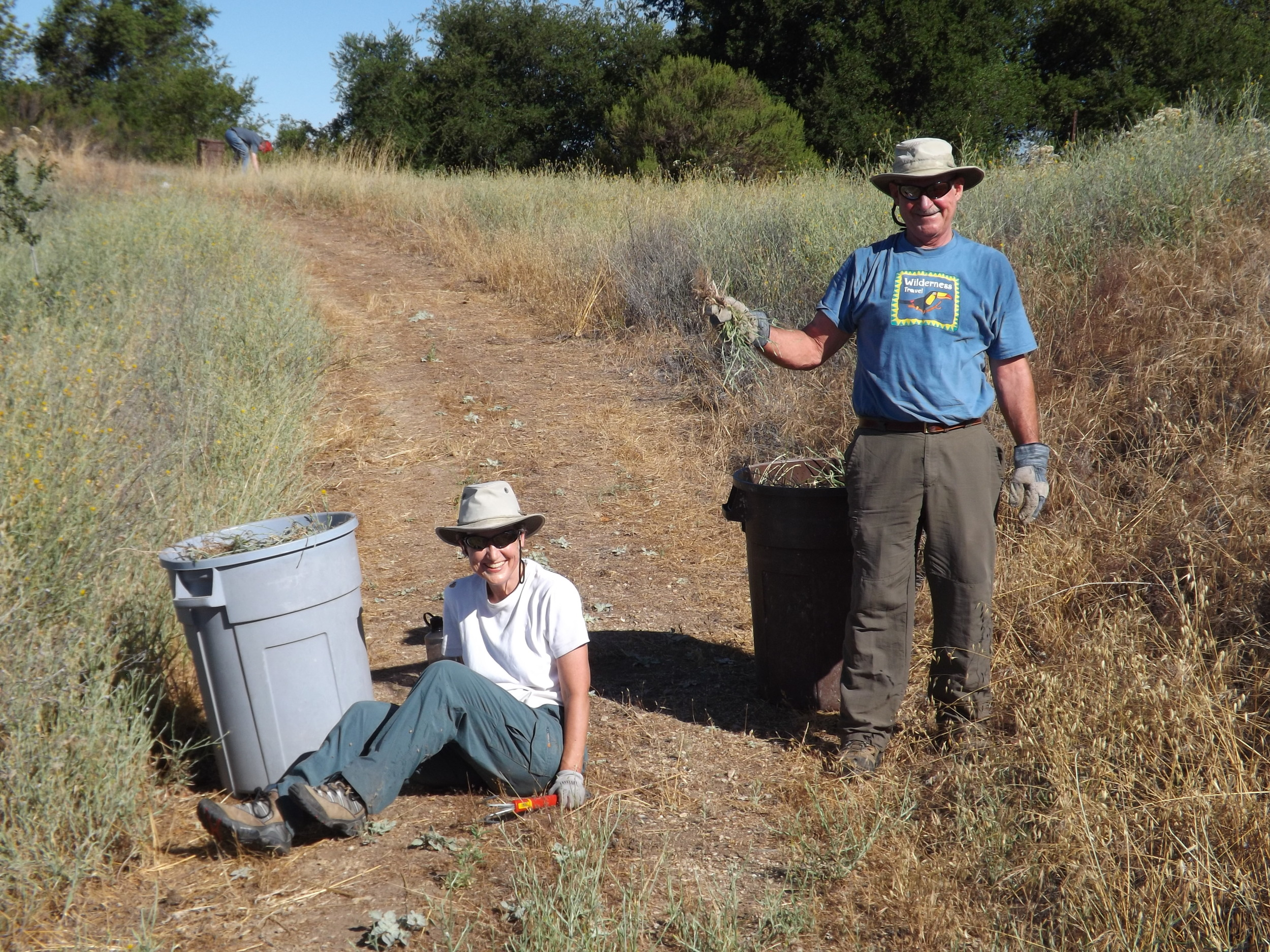 MARGARET MAGNUS is sitting down on the job (to avoid too much stooping) and Sam Ervin is showing the fruits of his labor in removing Yellow Starthistle. (Photo: Leslie Bridger, 2012)
