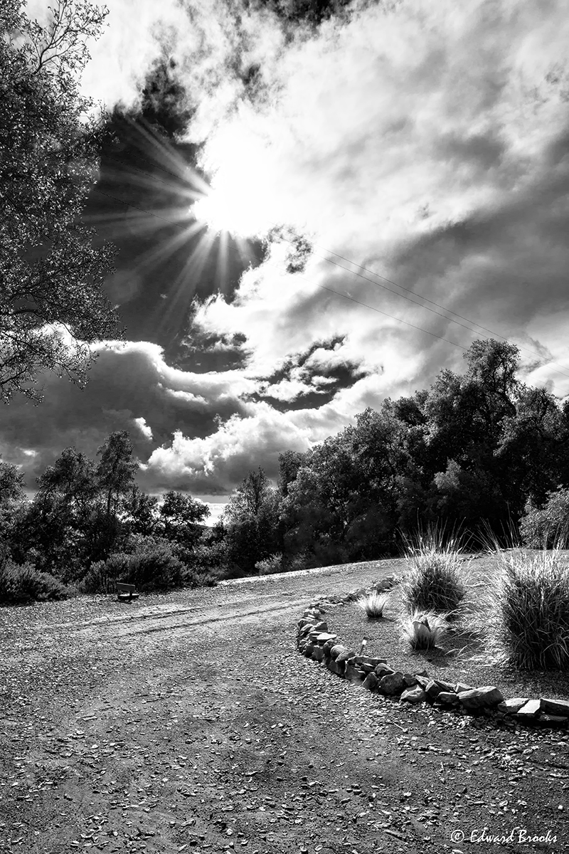 A PATHWAY at Meher Mount in Ojai, CA. (c) Edward Brooks, 2016.