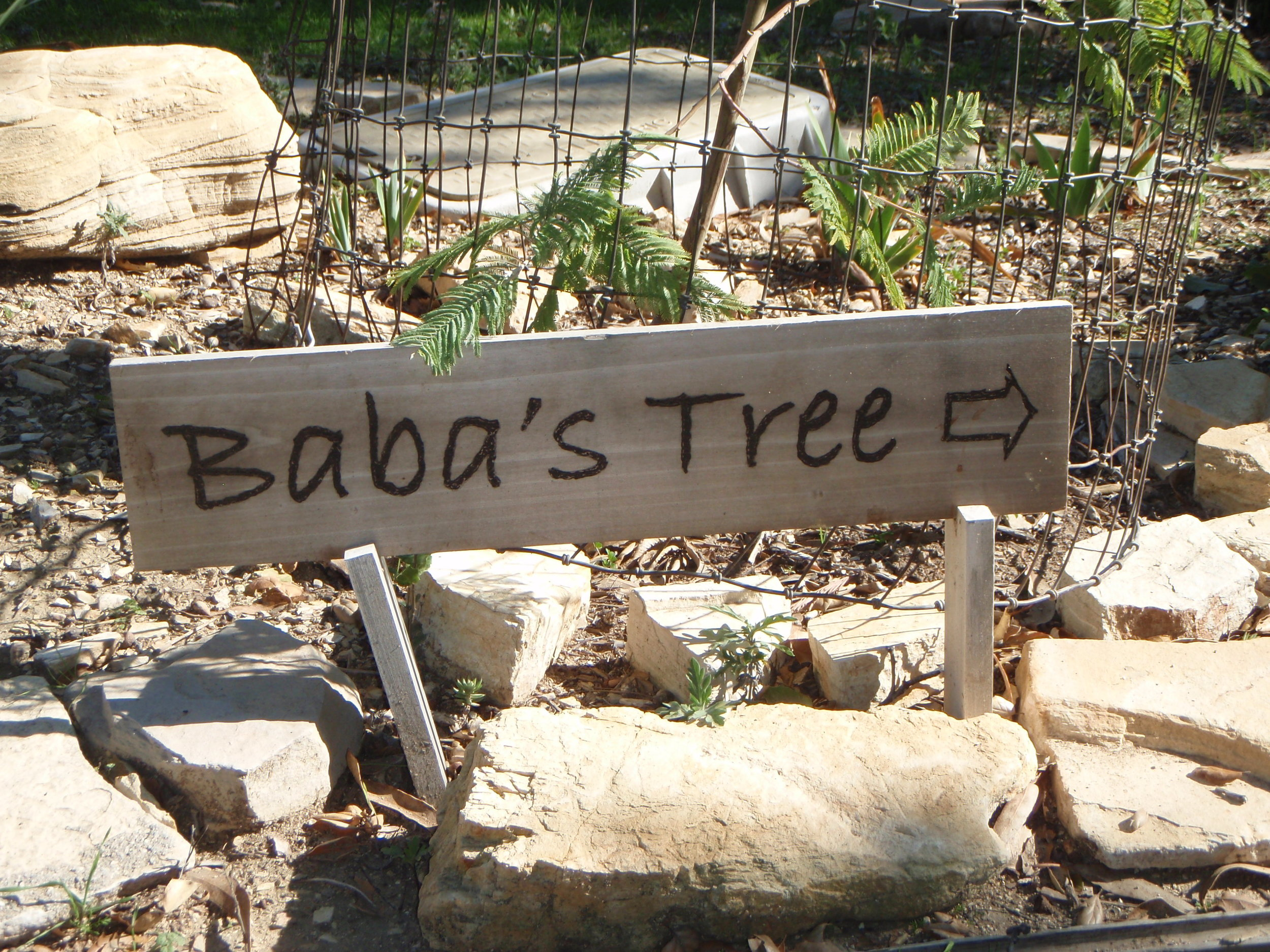 BABA'S TREE directional sign along with a number of other signs were created by former Manager/Caretaker Leslie Bridger to help guide visitors. (Photo: Margaret Magnus, 2015)